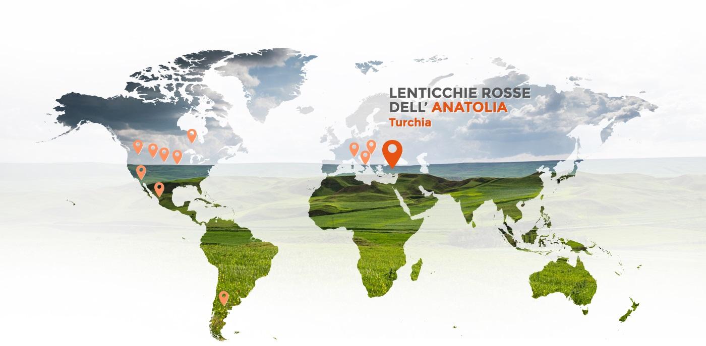 Lenticchie rosse dell'Anatolia